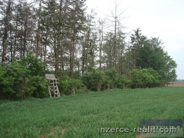 Prodej pozemků 44.285 m2, orná půda, Polanka Nad Odrou, Ostrava