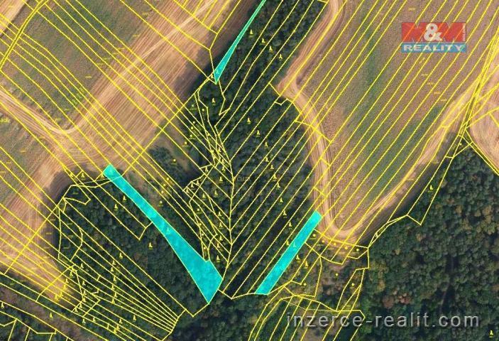 Prodej, les, 4471 m2, Újezd u Černé Hory