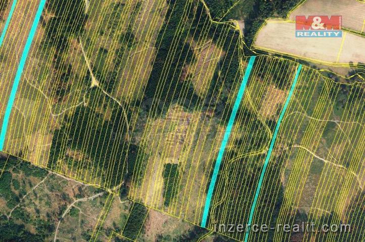 Prodej, les, 28654 m2, Nová Hradečná