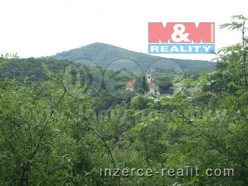 Prodej, pozemek, 22513 m2, Dolní Zálezly