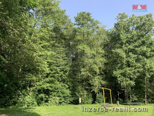 Prodej, les, 9 272 m2, Třinec - Lyžbice