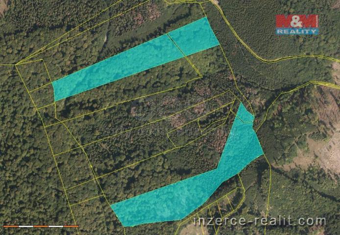 Prodej, les, 104793 m², Vendryně