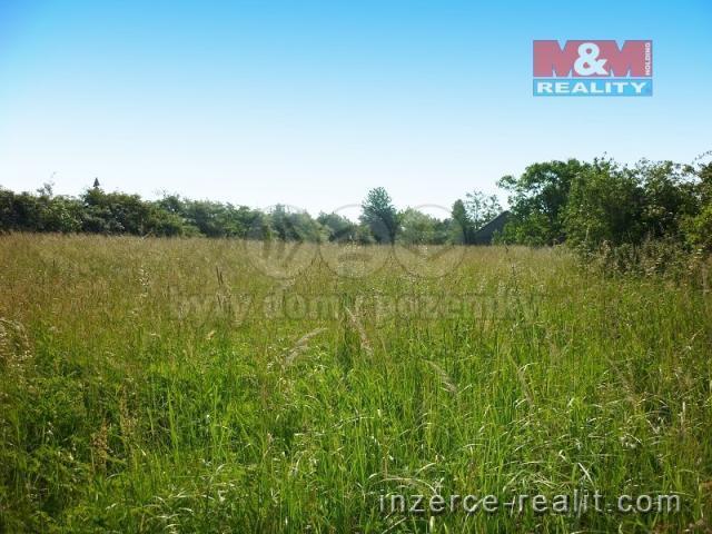 Prodej, pozemek 3410 m2, Horní Životice