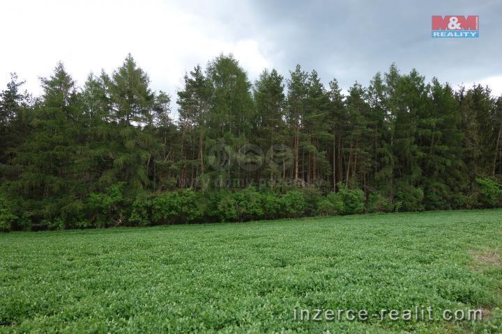 Směna, lesní pozemek, 5790 m2, Čistá u Litomyšle