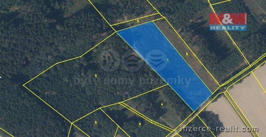 Prodej, les, 10672 m2, Černíkovice