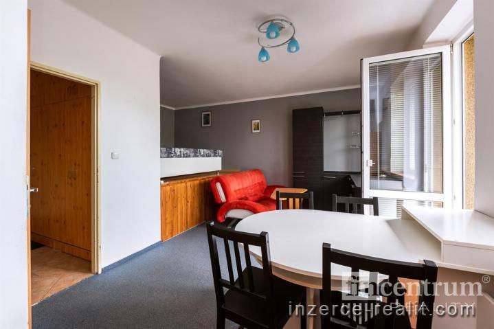 Pronájem bytu 1+1 29 m2 Nad Týncem, Plzeň Doubravka