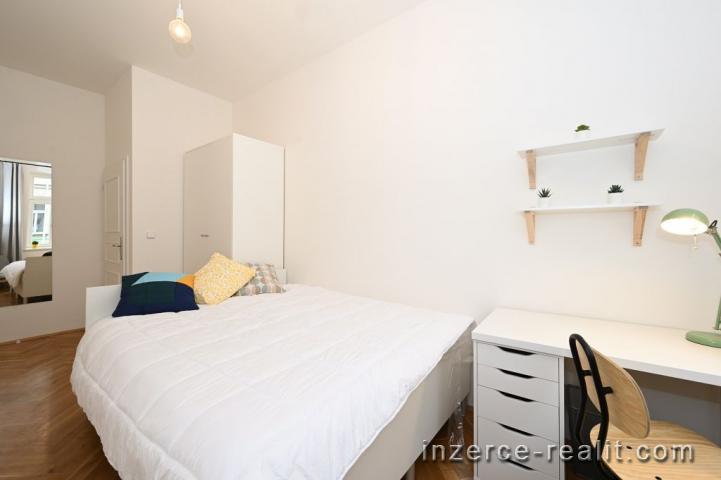 Residenční bydlení, pronájem pokoje 13m2  po rekonstrukci, Řehořova