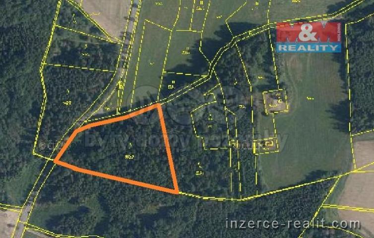 Prodej, les, 5946 m2, Předslav