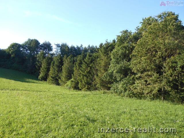 Prodej lesního pozemku v Kojetíně, 1600 m2