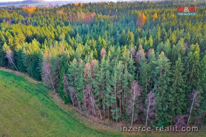 Prodej, les, 13238 m2, Nová Ves u Světlé nad Sázavou