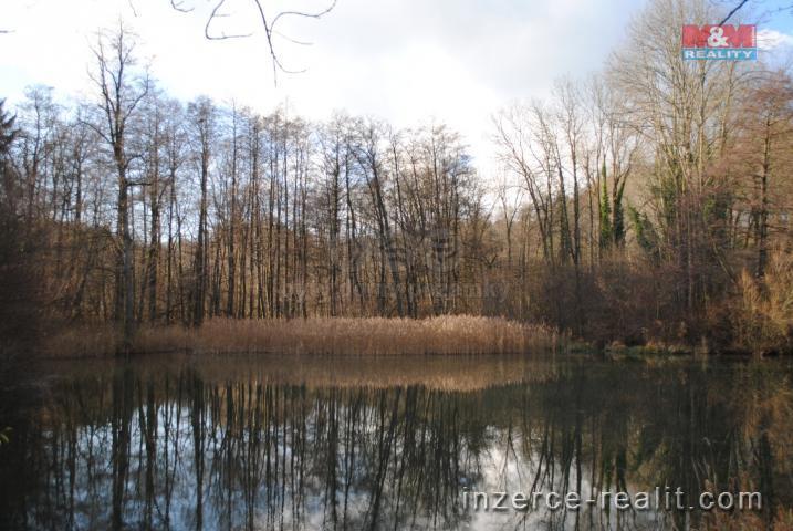 Prodej, vodní plocha a les, Libecina