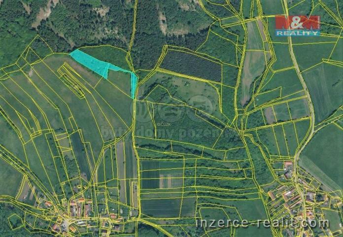 Prodej, les, 6003 m², Třebívlice
