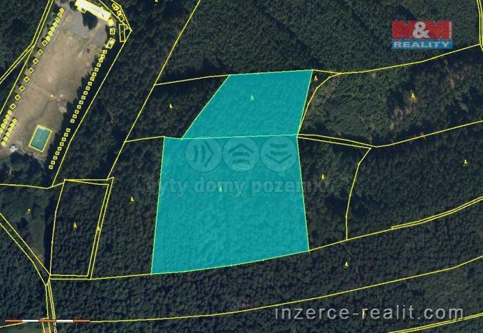 Prodej, les, 33 747 m2, Stašov