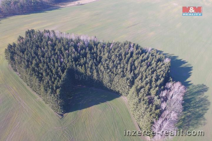 Prodej, les, Višňová