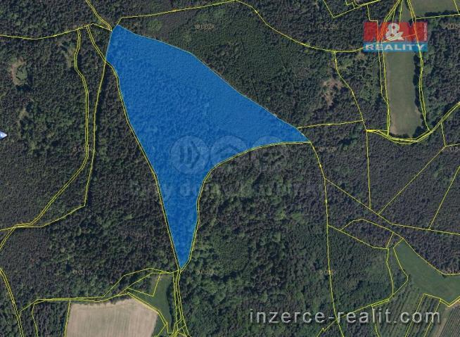 Prodej, les, 86158 m2, Kralovice u Prachatic