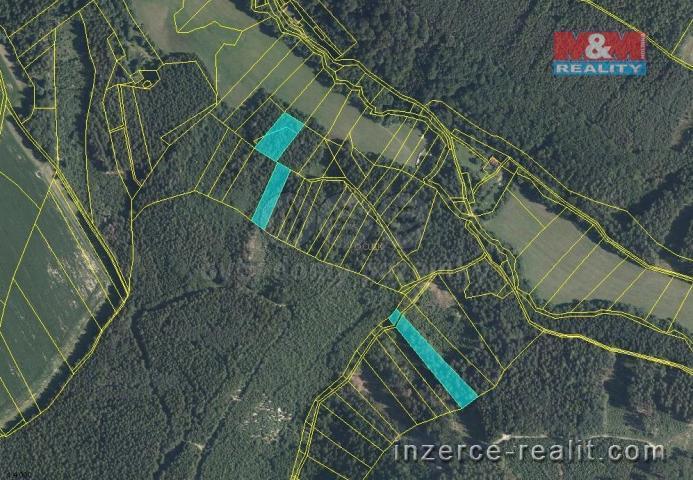 Prodej, les, Leština