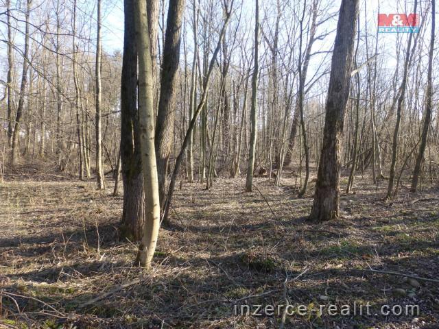 Prodej, les, 2039 m², Frýdlant nad Ostravicí
