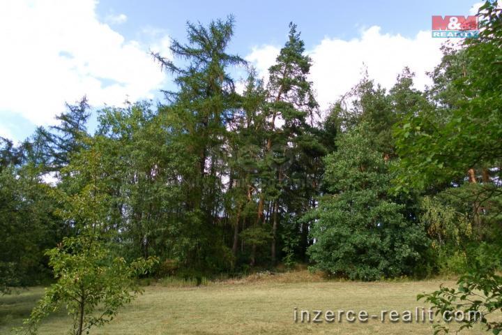 Prodej, les, 24097 m², Hradiště - Bezděkov