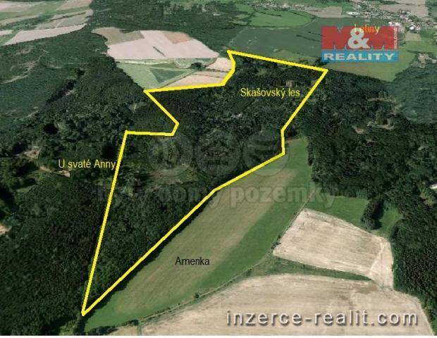 Prodej, lesní pozemky, 637 639 m2, Skašov