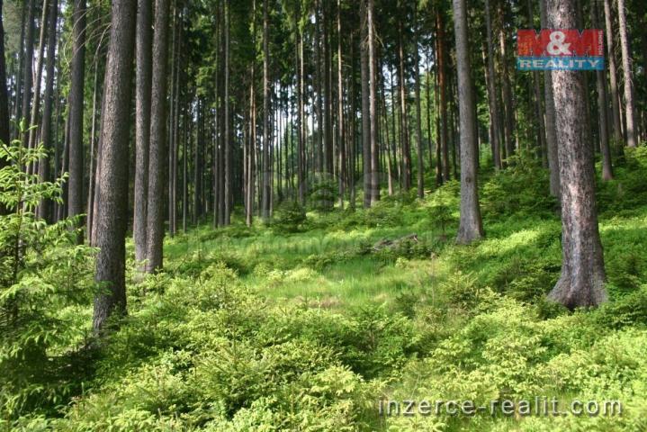 Prodej, les, 403949 m², Frýdek - Místek