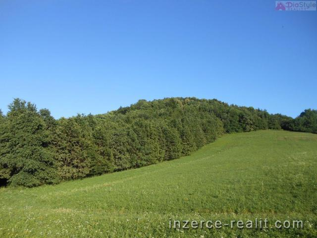 Prodej lesních a zemědělských pozemků v Kojetíně u Starého Jičína,  40 149 m2