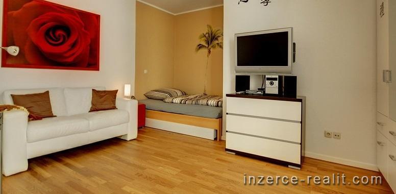 Pronájem bytu 1 + 1, Praha-Bubeneč